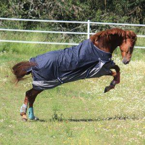 regntäcke till häst